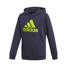 Must Have Badge of Sports Hoody Boys